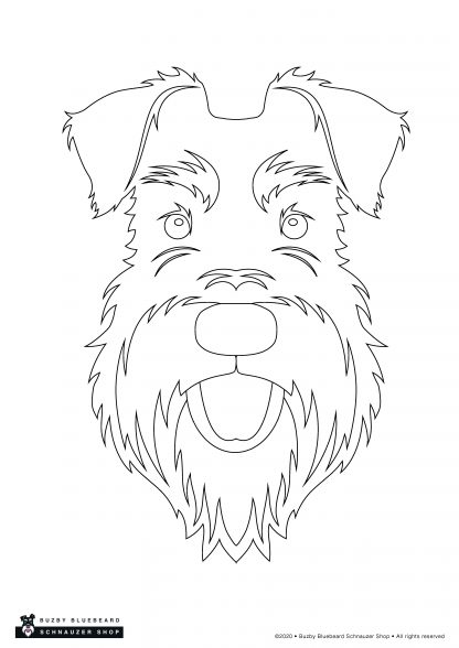 outline face plain
