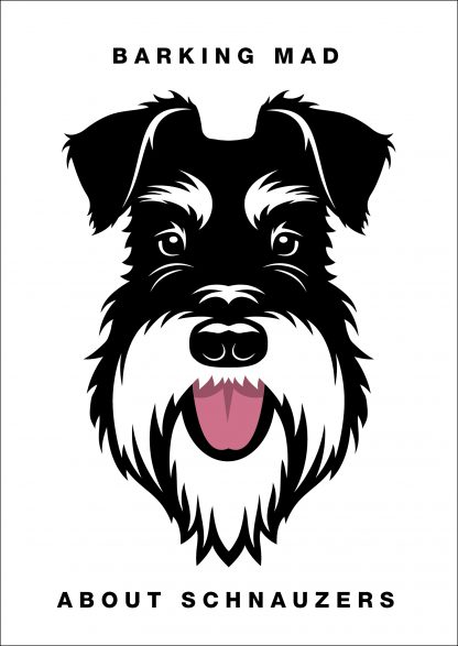 Barking mad about schnauzers silver and black