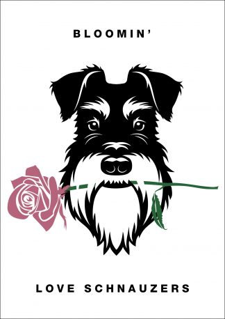 Blooming' love schnauzers silver and black poster