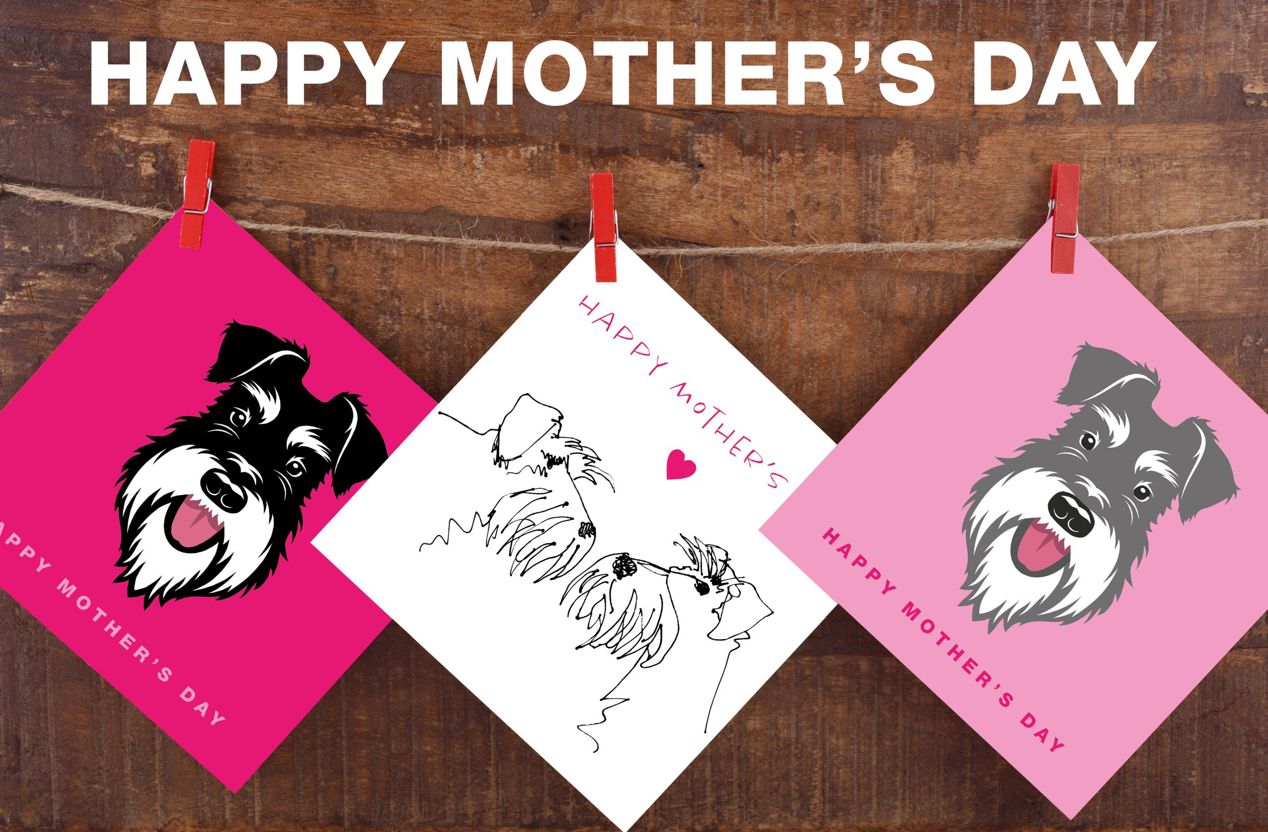 mothers day cards montage on washing line